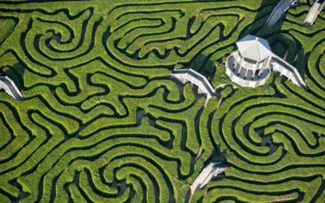 合作遊戲 - 隱形迷宮 - 草草了事